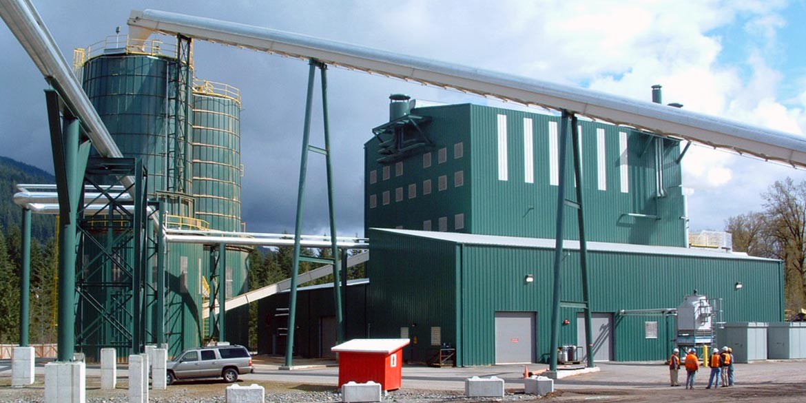 Wellons Biomass Steam Boiler - Field Erected Boiler